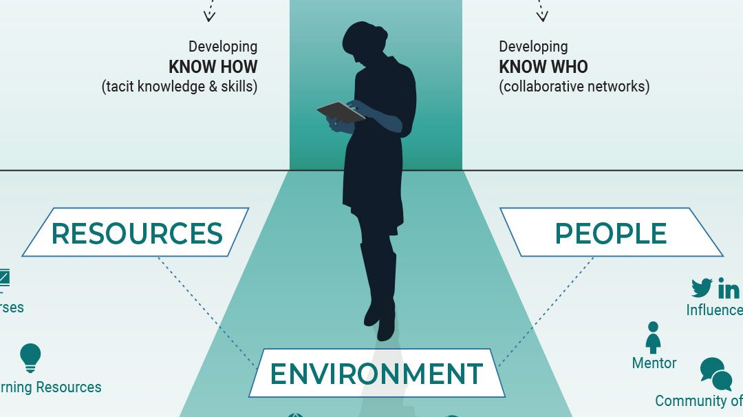 Infographic: Learning in a High Performance Ecosystem