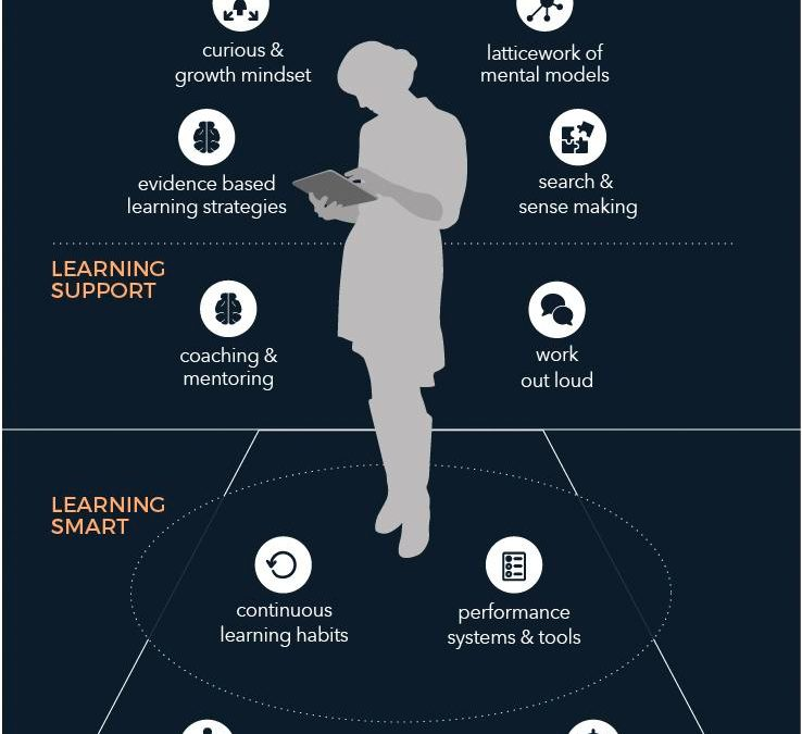 Infographic: Anatomy of an Agile Learner