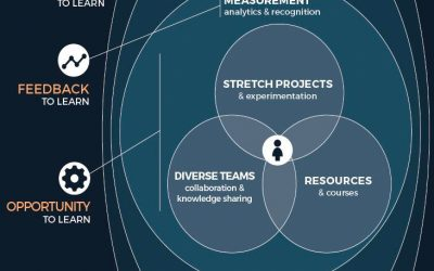 Infographic: Organisational Learning Agility