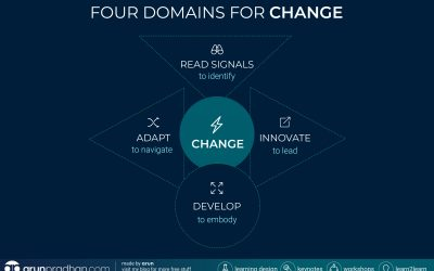 Infographic: Four Domains for Change